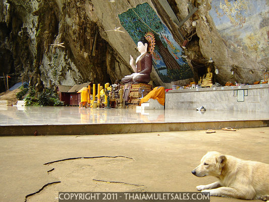 Buddha beneath 300 meter limestone cliff at Wat Tham Seaua